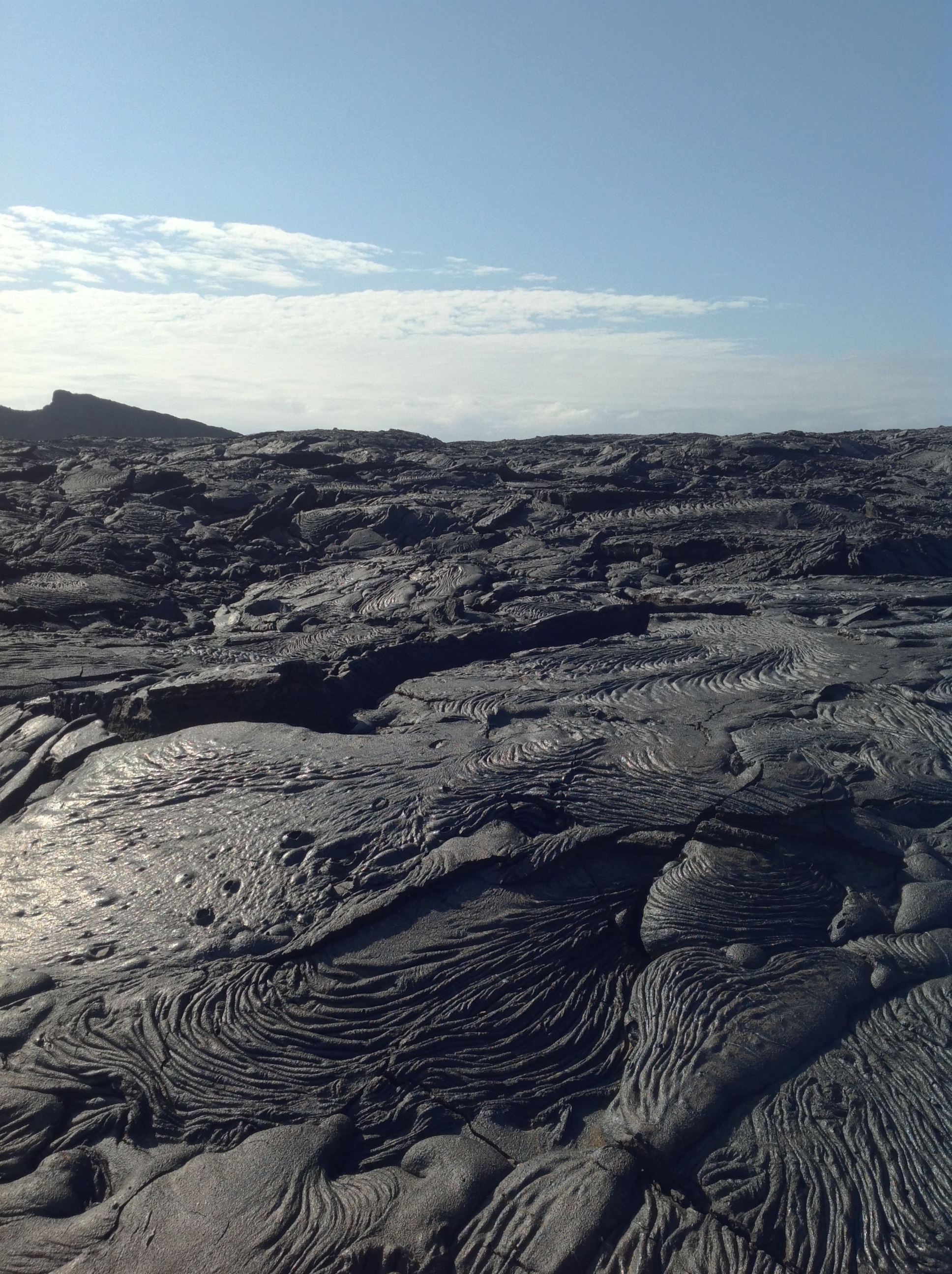 An expanse of hardened black lava.  It was like walking across natural sculptures, different patterns and artistic swirls in every direction.