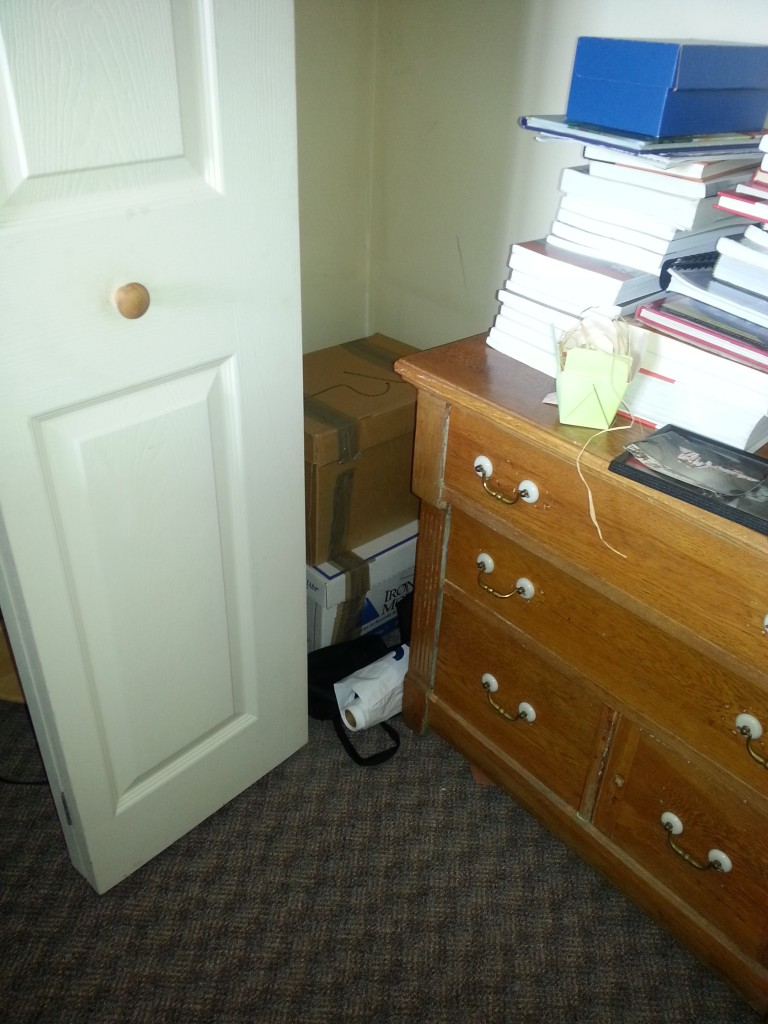 "The horror!  Bankers boxes stowed in the back corner of the closet.  This is how I ""processed"" them last Fall when I challenged myself to get rid of them.  The dresser is empty, btw."